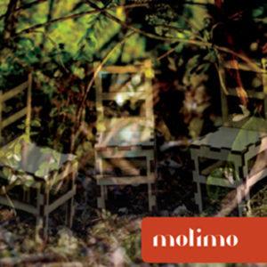 Distritojazz-jazz-discos-Molimo-Molimo