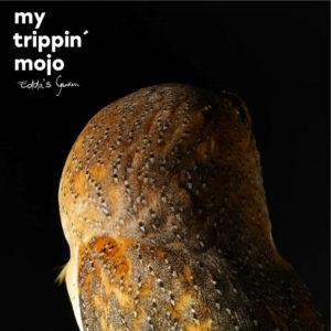 distritojazz-off-jazz-soul-my-trippin-mojo-eddas-garden