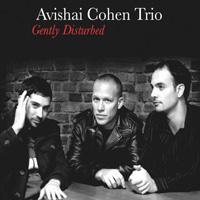 distritojazz_discos_jazz_Avishai_Cohen_Trio_Gently_Disturbed